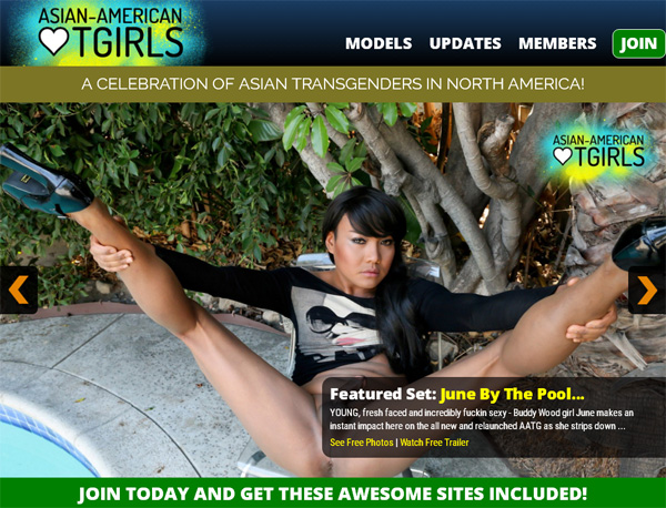 Asian American TGirls Network Password