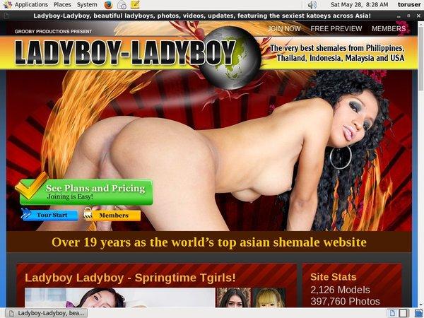 Ladyboyladyboy Member Trial