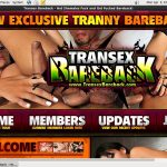 Free Transexbareback Sign Up