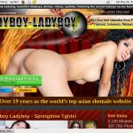 Discounted Ladyboy Ladyboy